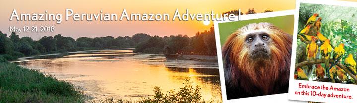 Peruvian-Amazon1
