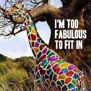 too fabulous giraffe