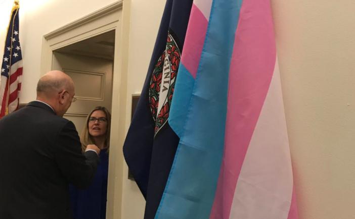 Wexler Trans Flag